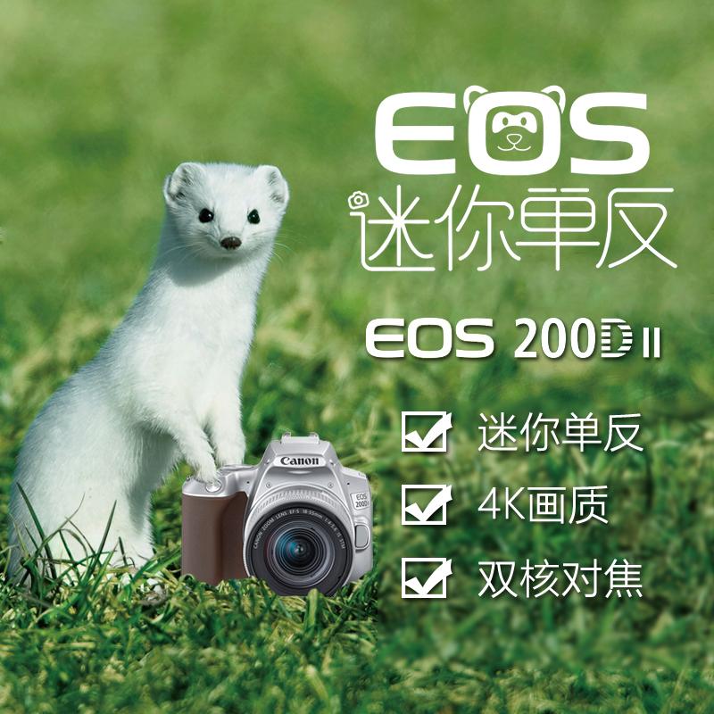 EOS 200D II 银色套机 EF-S 18-55mm f/4-5.6 IS STM